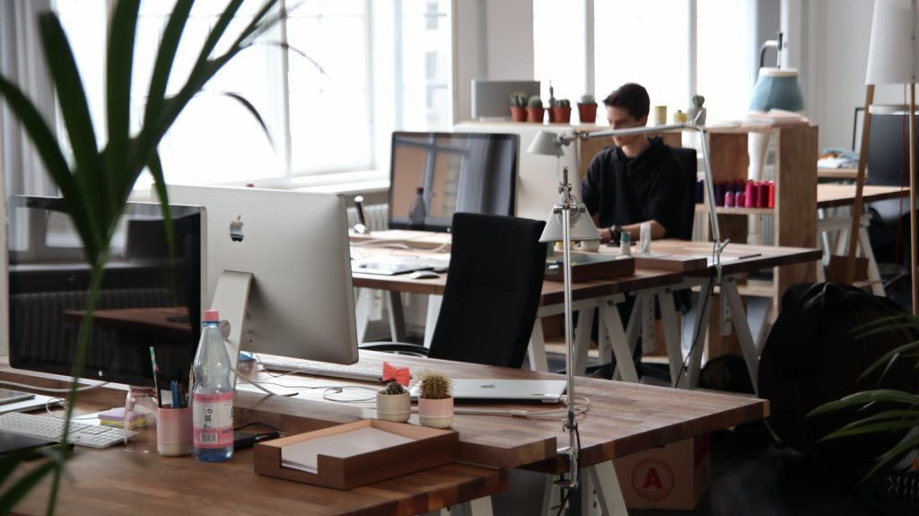 How Business Can Prevent Their Offices from Pests